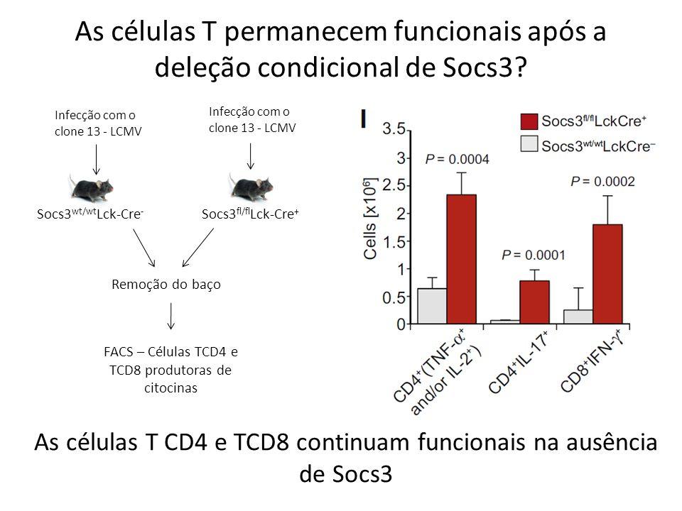As células T permanecem funcionais após a deleção condicional de Socs3