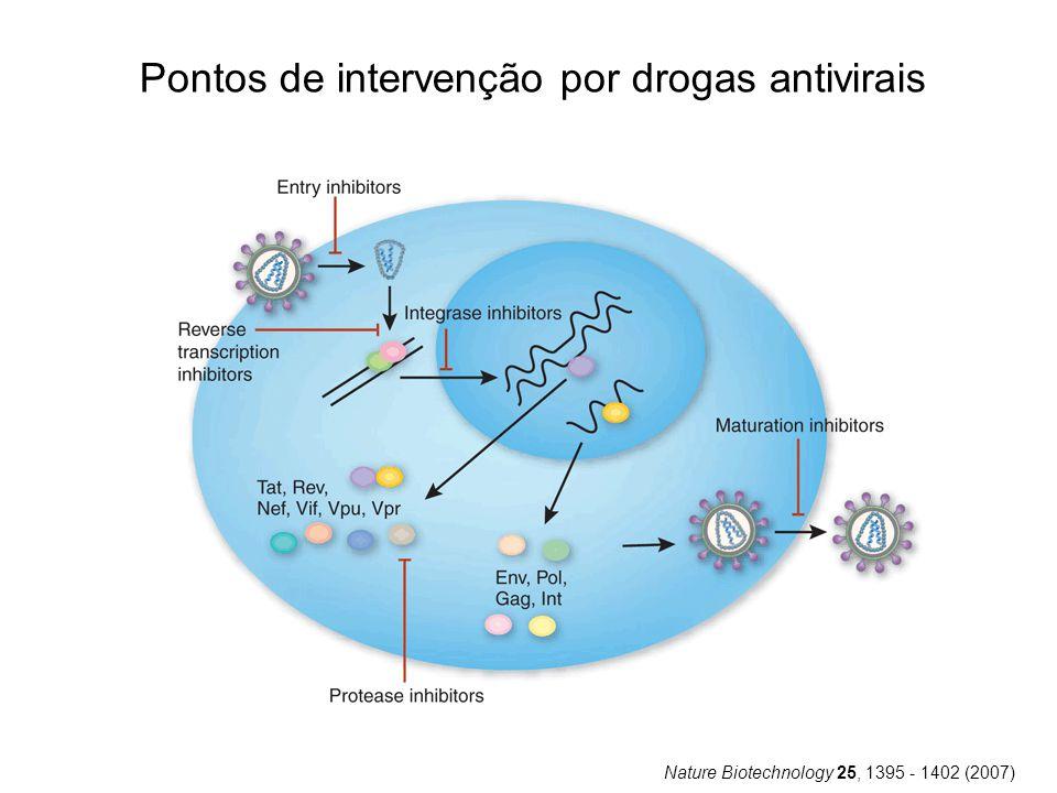 Pontos de intervenção por drogas antivirais