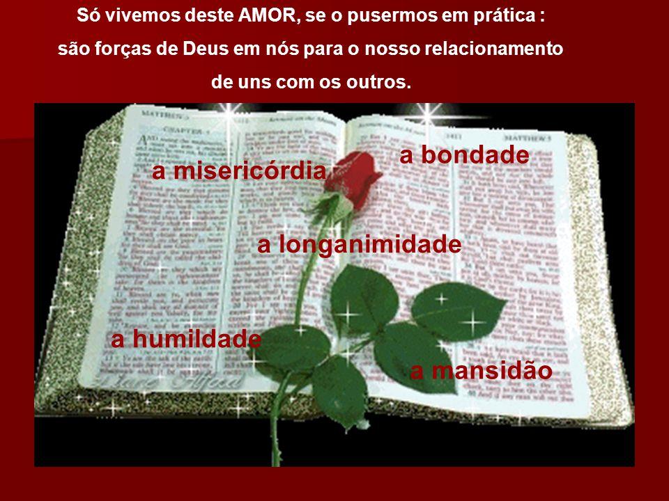 a bondade a misericórdia a longanimidade a humildade a mansidão