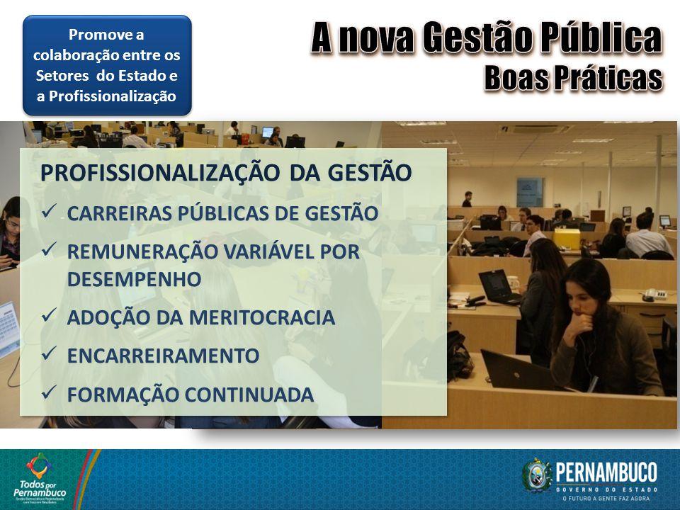 A nova Gestão Pública Boas Práticas PROFISSIONALIZAÇÃO DA GESTÃO