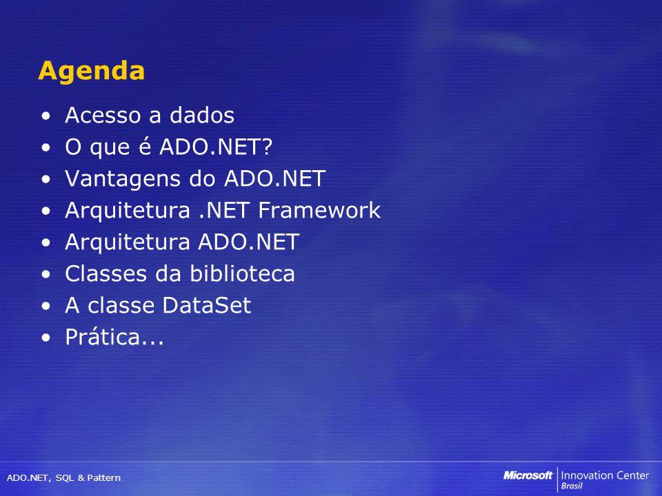 Agenda Acesso a dados O que é ADO.NET Vantagens do ADO.NET