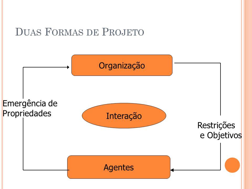 Duas Formas de Projeto Organização Emergência de Propriedades
