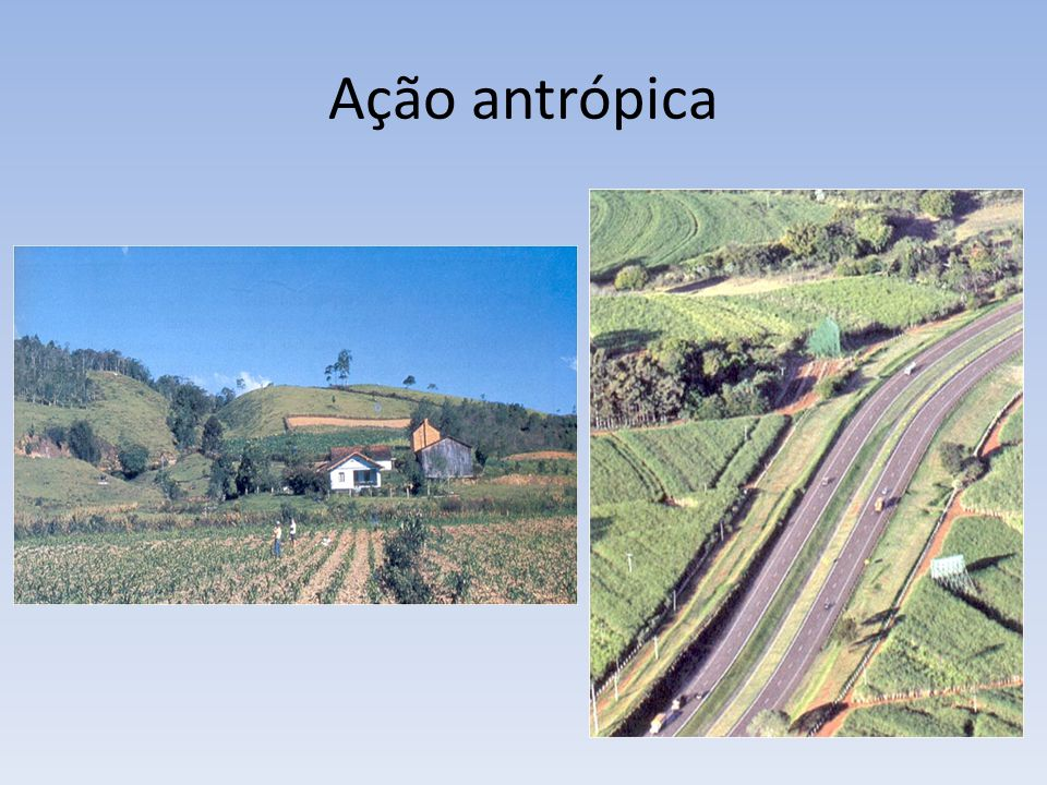 Ação antrópica