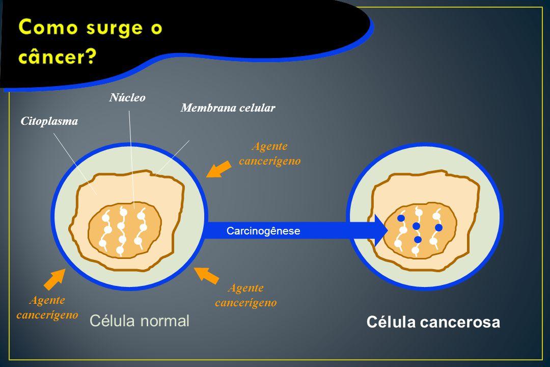Como surge o câncer Célula normal Célula cancerosa Núcleo