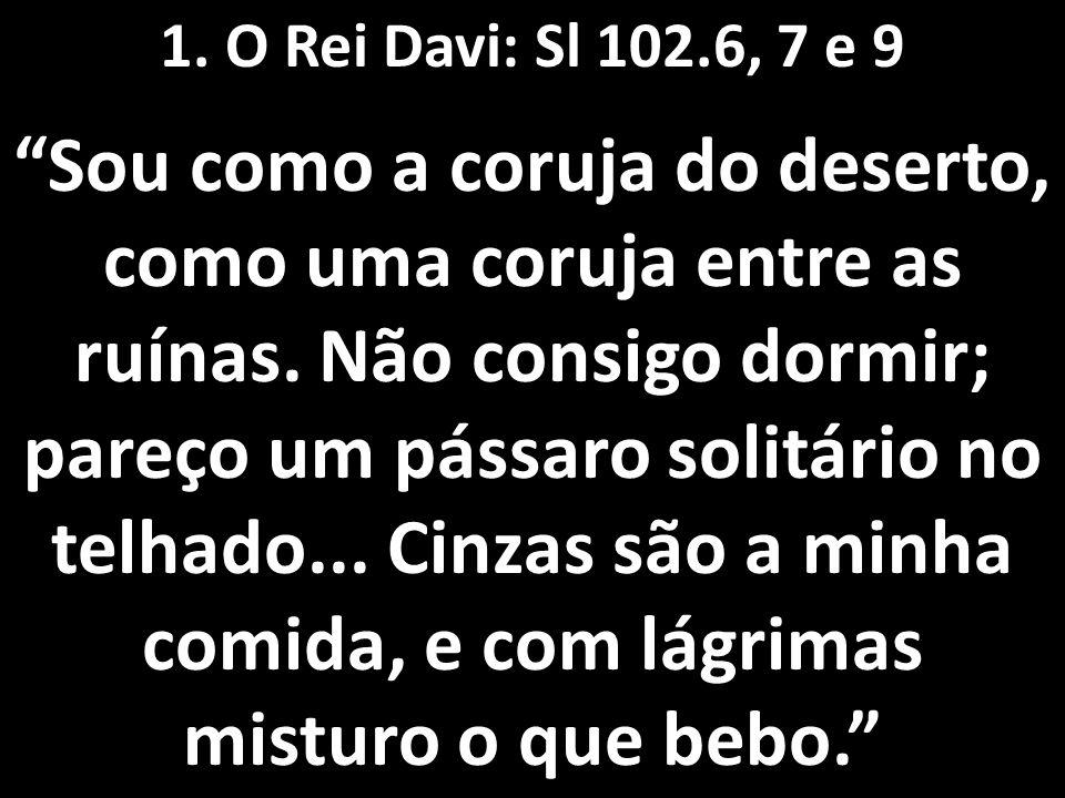 1. O Rei Davi: Sl 102.6, 7 e 9