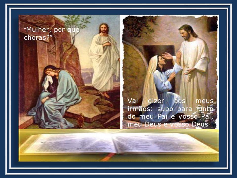VAMOS REFLETIR SOBRE A MENSAGEM DO EVANGELHO