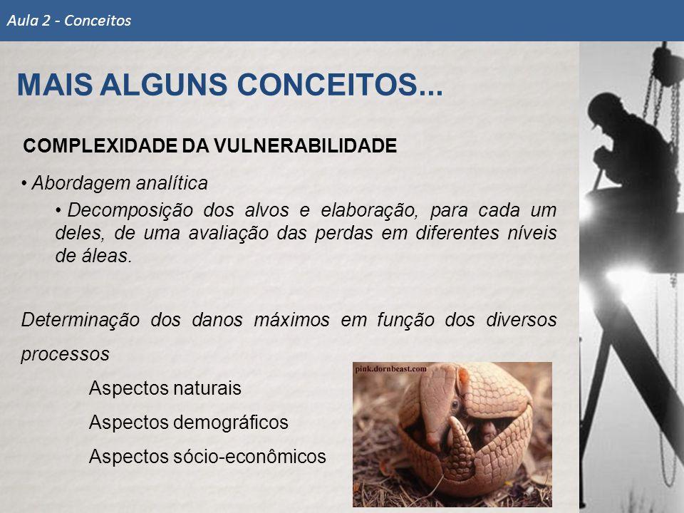 MAIS ALGUNS CONCEITOS... COMPLEXIDADE DA VULNERABILIDADE