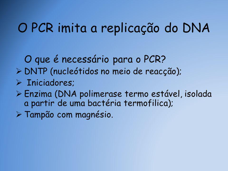 O PCR imita a replicação do DNA