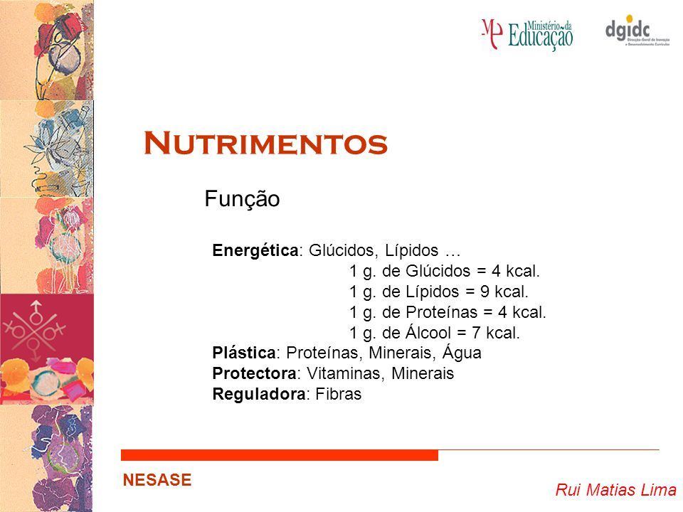 Nutrimentos Função Energética: Glúcidos, Lípidos …