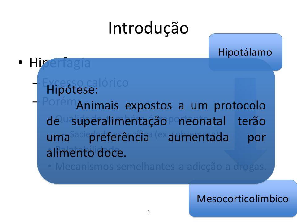 Introdução Hiperfagia Excesso calórico Hipótese: Porém: