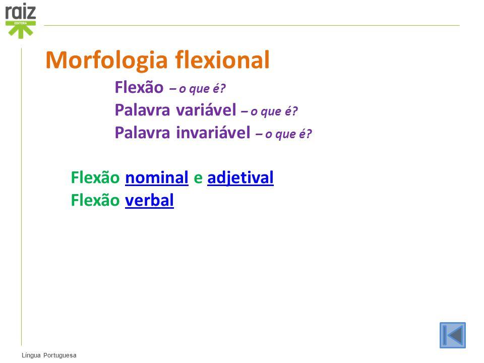 Morfologia flexional Flexão – o que é Palavra variável – o que é