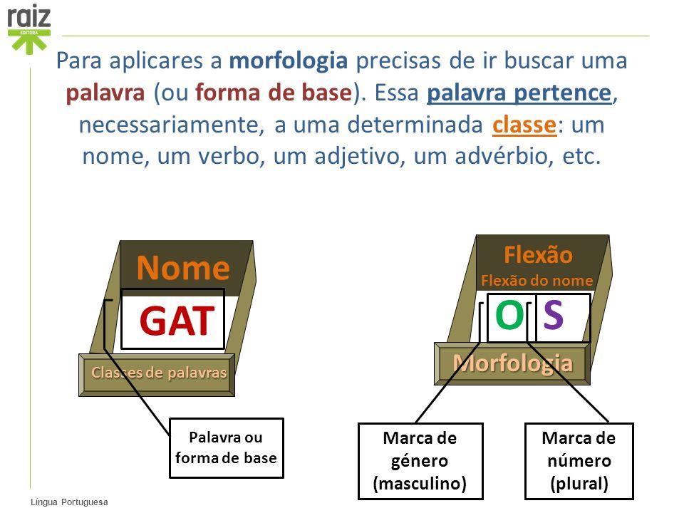 Para aplicares a morfologia precisas de ir buscar uma palavra (ou forma de base). Essa palavra pertence, necessariamente, a uma determinada classe: um nome, um verbo, um adjetivo, um advérbio, etc.