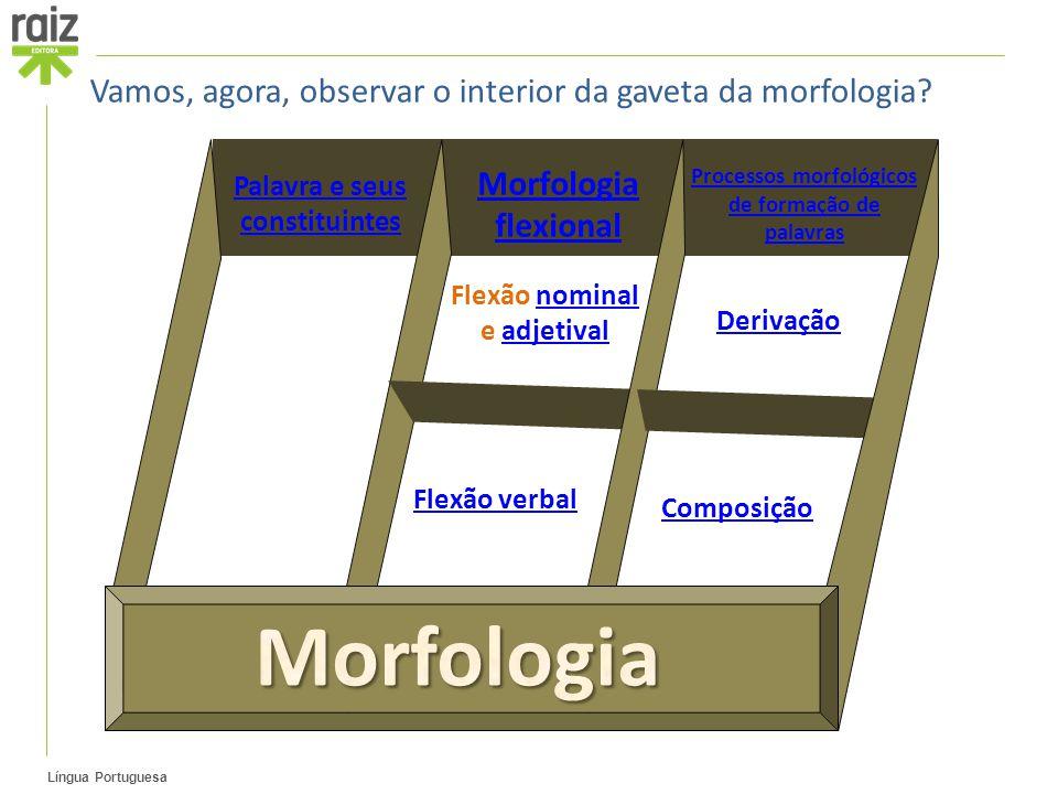 Morfologia Vamos, agora, observar o interior da gaveta da morfologia