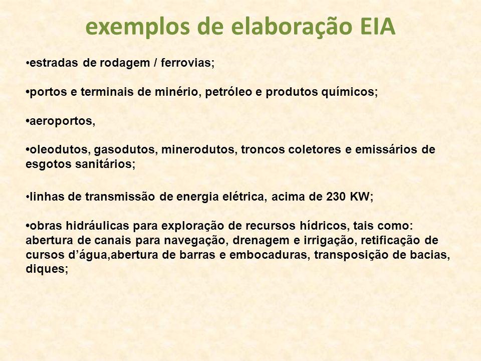 exemplos de elaboração EIA