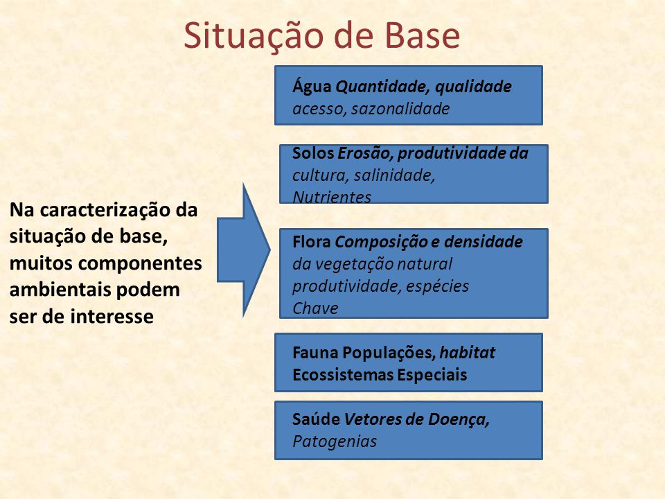 Situação de Base Na caracterização da situação de base,