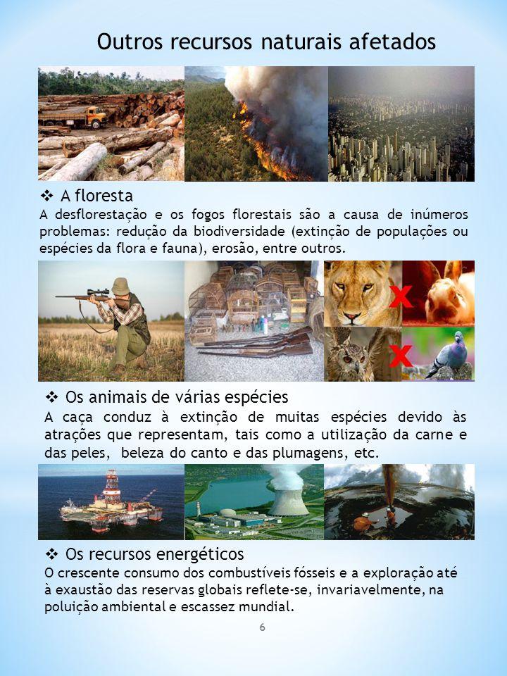 Outros recursos naturais afetados