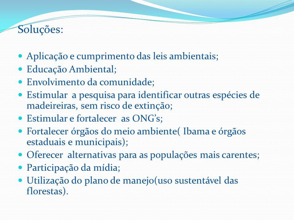 Soluções: Aplicação e cumprimento das leis ambientais;