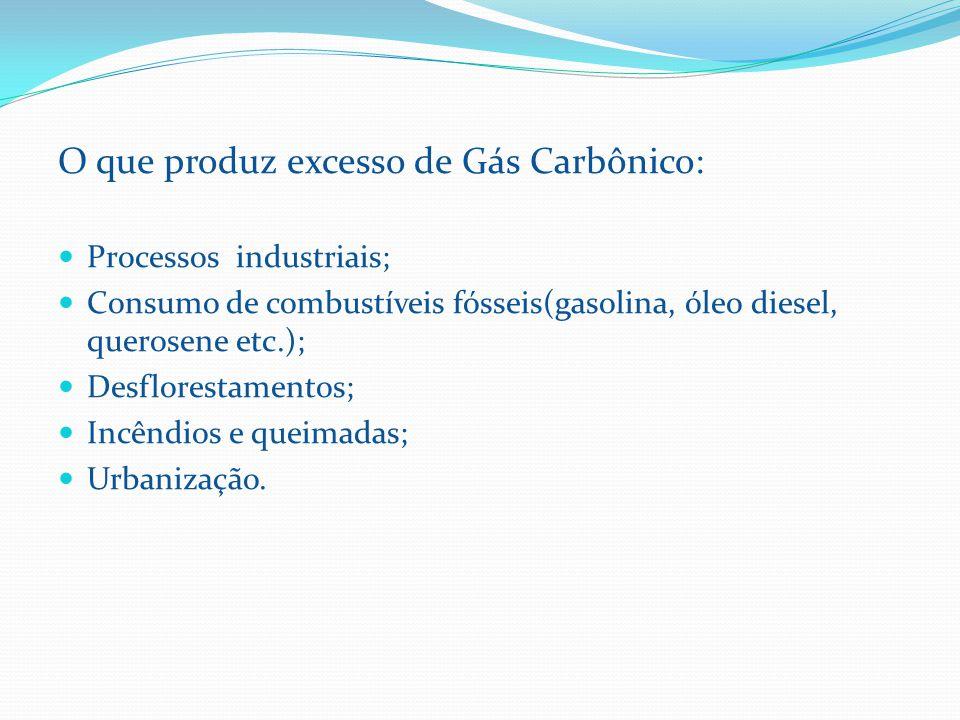 O que produz excesso de Gás Carbônico: