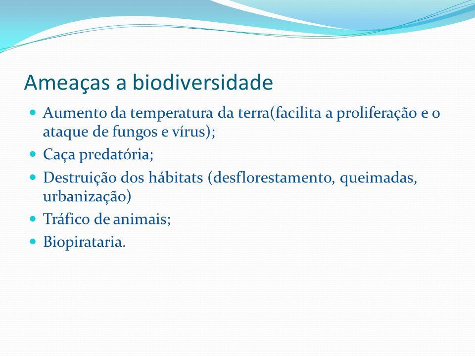 Ameaças a biodiversidade