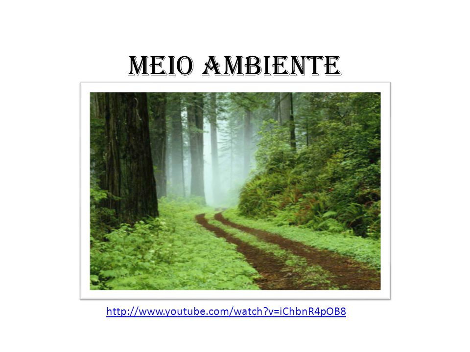 MEIO AMBIENTE http://www.youtube.com/watch v=iChbnR4pOB8