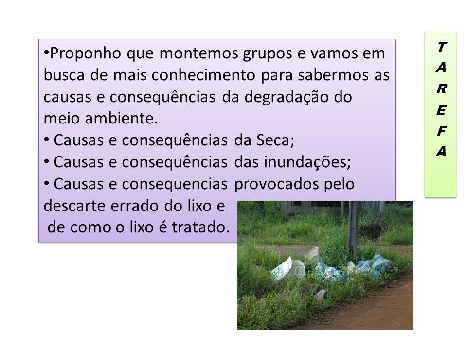 Causas e consequências da Seca; Causas e consequências das inundações;