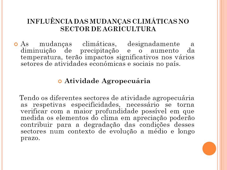 INFLUÊNCIA DAS MUDANÇAS CLIMÁTICAS NO SECTOR DE AGRICULTURA