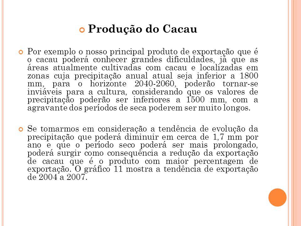 Produção do Cacau
