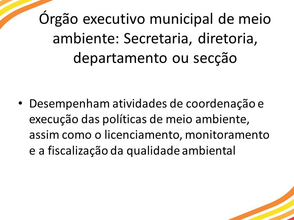 Órgão executivo municipal de meio ambiente: Secretaria, diretoria, departamento ou secção