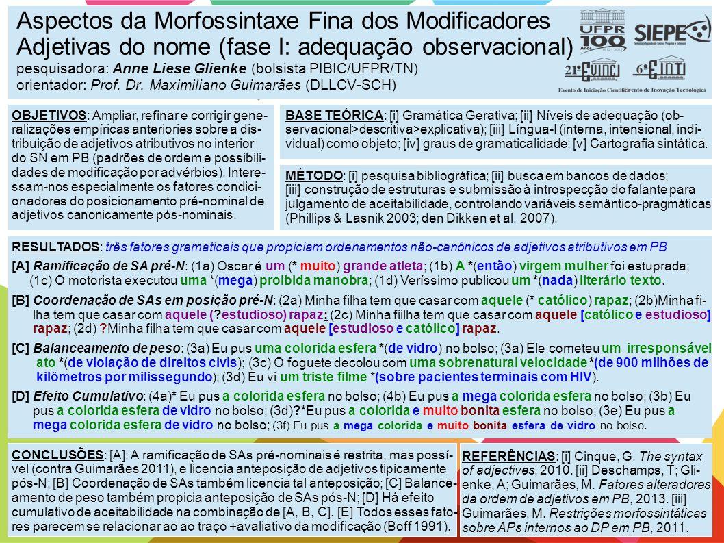 Aspectos da Morfossintaxe Fina dos Modificadores Adjetivas do nome (fase I: adequação observacional) pesquisadora: Anne Liese Glienke (bolsista PIBIC/UFPR/TN) orientador: Prof. Dr. Maximiliano Guimarães (DLLCV-SCH)