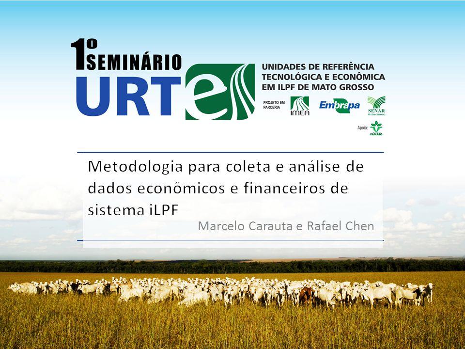 Metodologia para coleta e análise de dados econômicos e financeiros de sistema iLPF