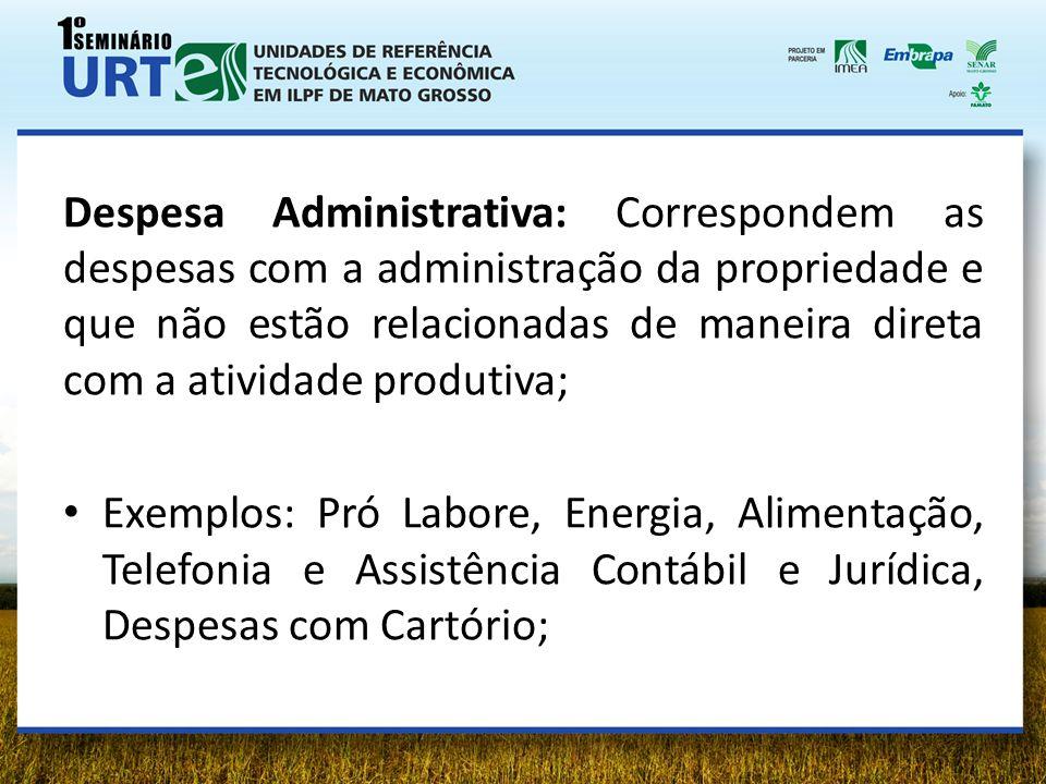Despesa Administrativa: Correspondem as despesas com a administração da propriedade e que não estão relacionadas de maneira direta com a atividade produtiva;