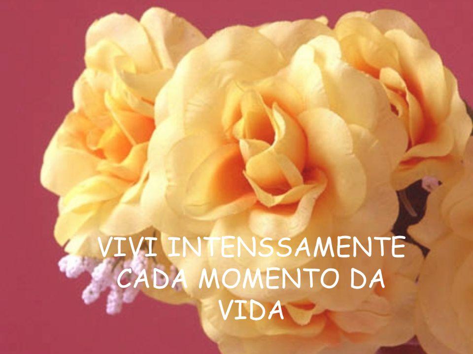 VIVI INTENSSAMENTE CADA MOMENTO DA VIDA