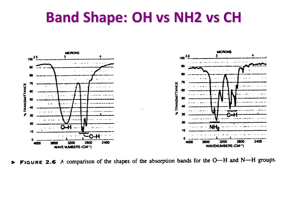 Band Shape: OH vs NH2 vs CH