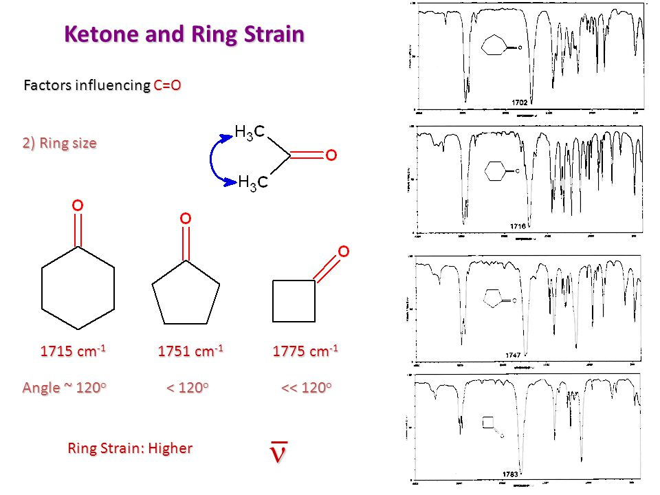 n Ketone and Ring Strain Factors influencing C=O 2) Ring size