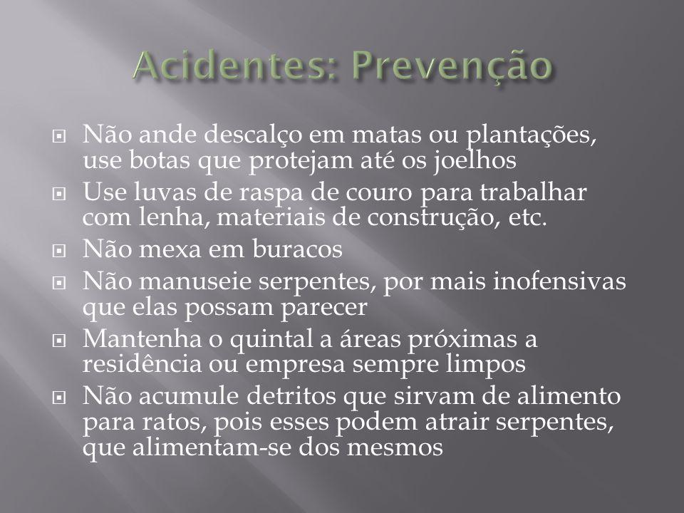 Acidentes: Prevenção Não ande descalço em matas ou plantações, use botas que protejam até os joelhos.