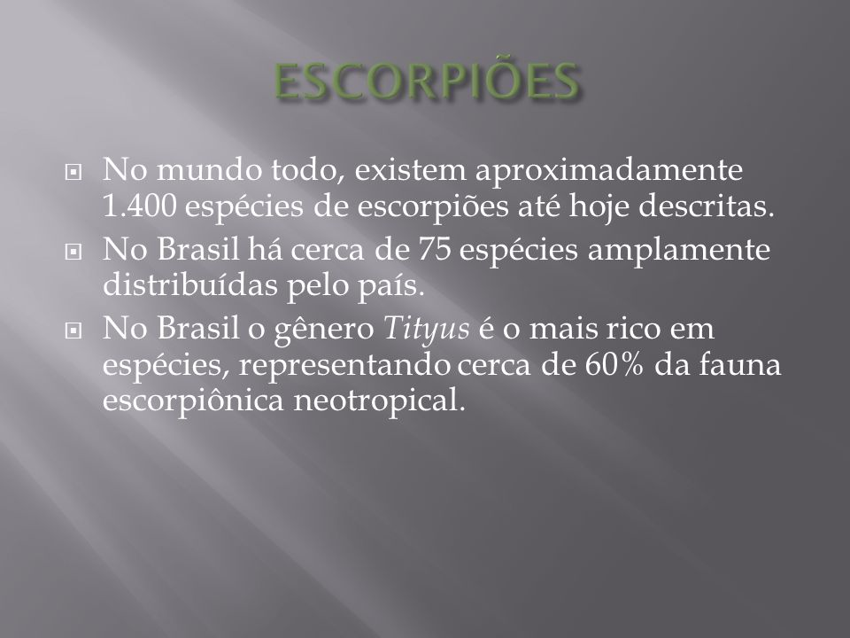ESCORPIÕES No mundo todo, existem aproximadamente 1.400 espécies de escorpiões até hoje descritas.