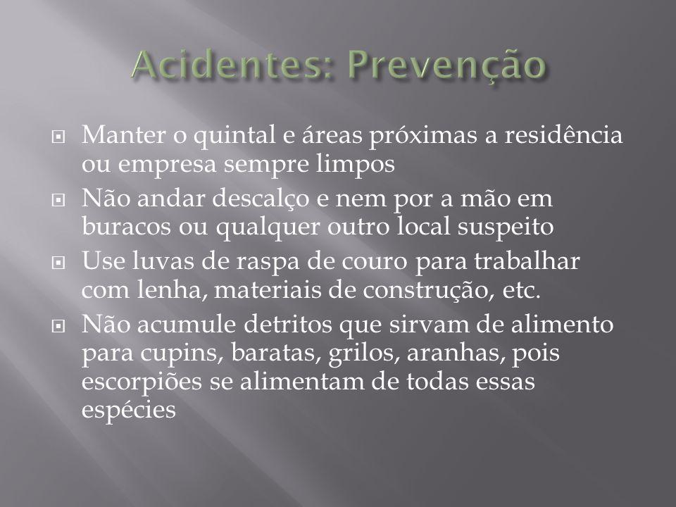 Acidentes: Prevenção Manter o quintal e áreas próximas a residência ou empresa sempre limpos.