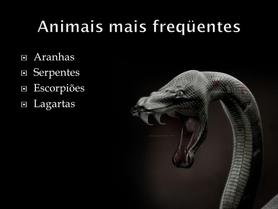 Animais mais freqüentes