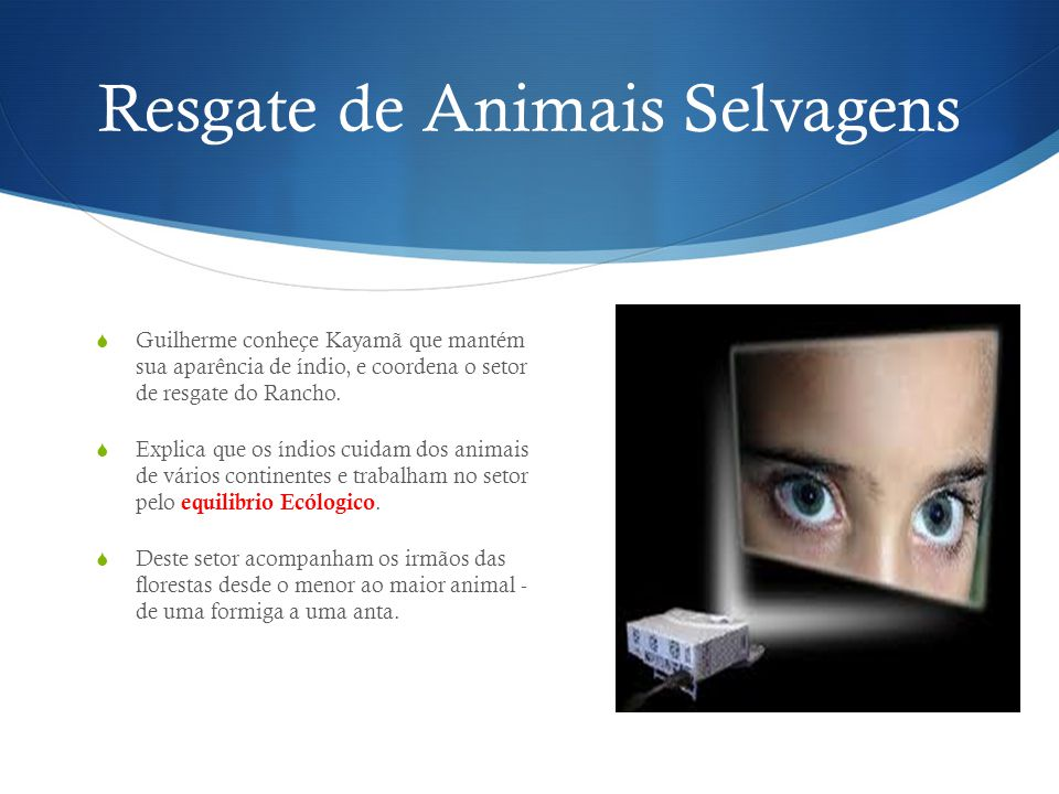 Resgate de Animais Selvagens