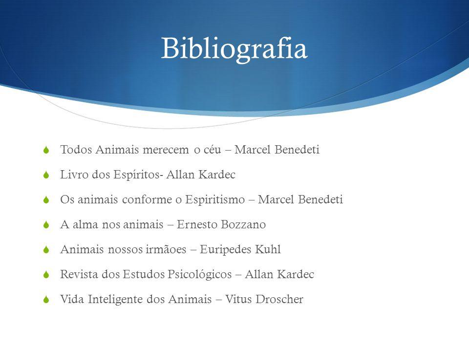 Bibliografia Todos Animais merecem o céu – Marcel Benedeti