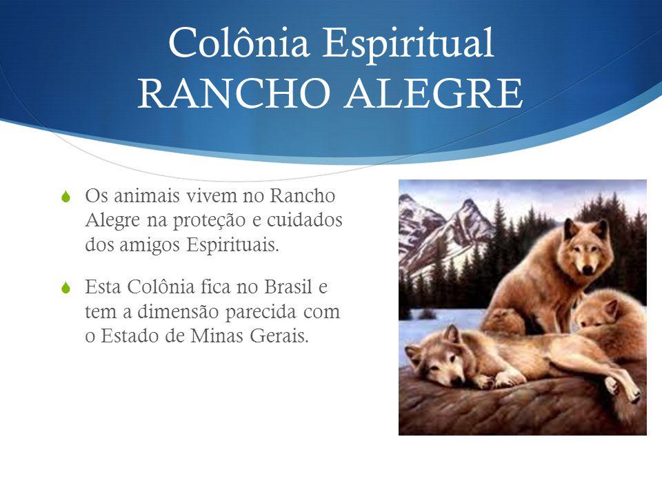 Colônia Espiritual RANCHO ALEGRE