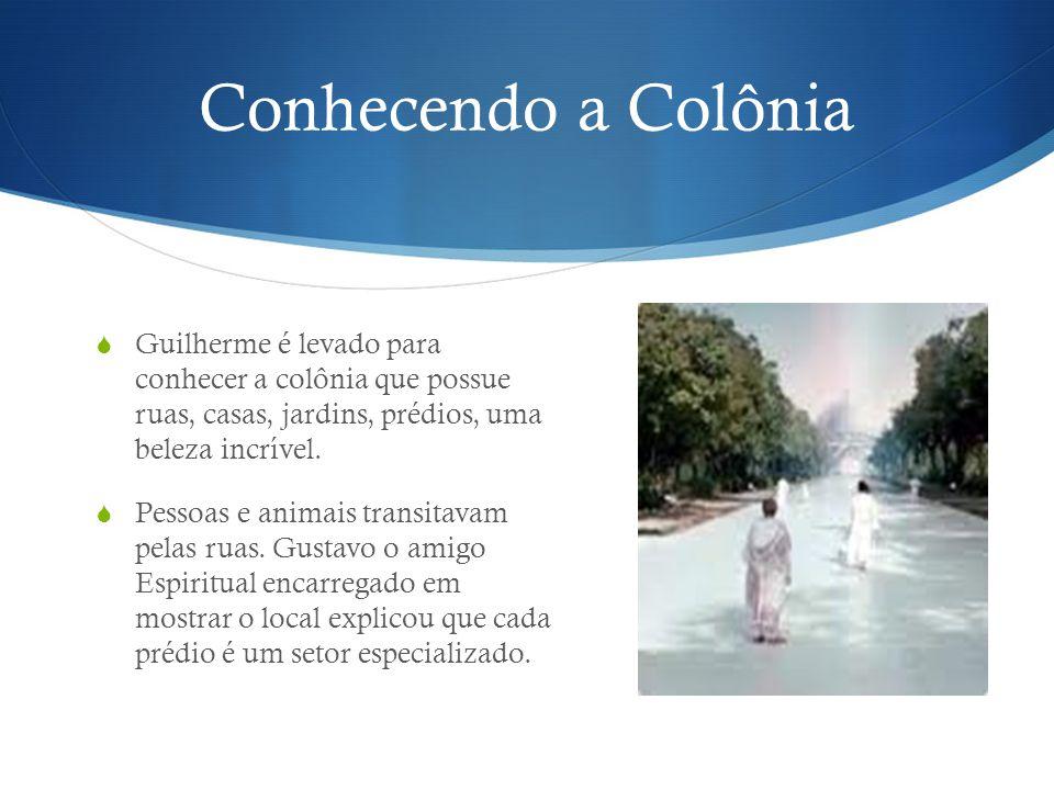 Conhecendo a Colônia Guilherme é levado para conhecer a colônia que possue ruas, casas, jardins, prédios, uma beleza incrível.