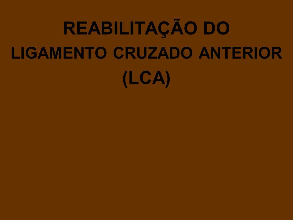 REABILITAÇÃO DO LIGAMENTO CRUZADO ANTERIOR (LCA)