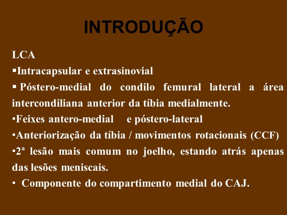 INTRODUÇÃO LCA Intracapsular e extrasinovial