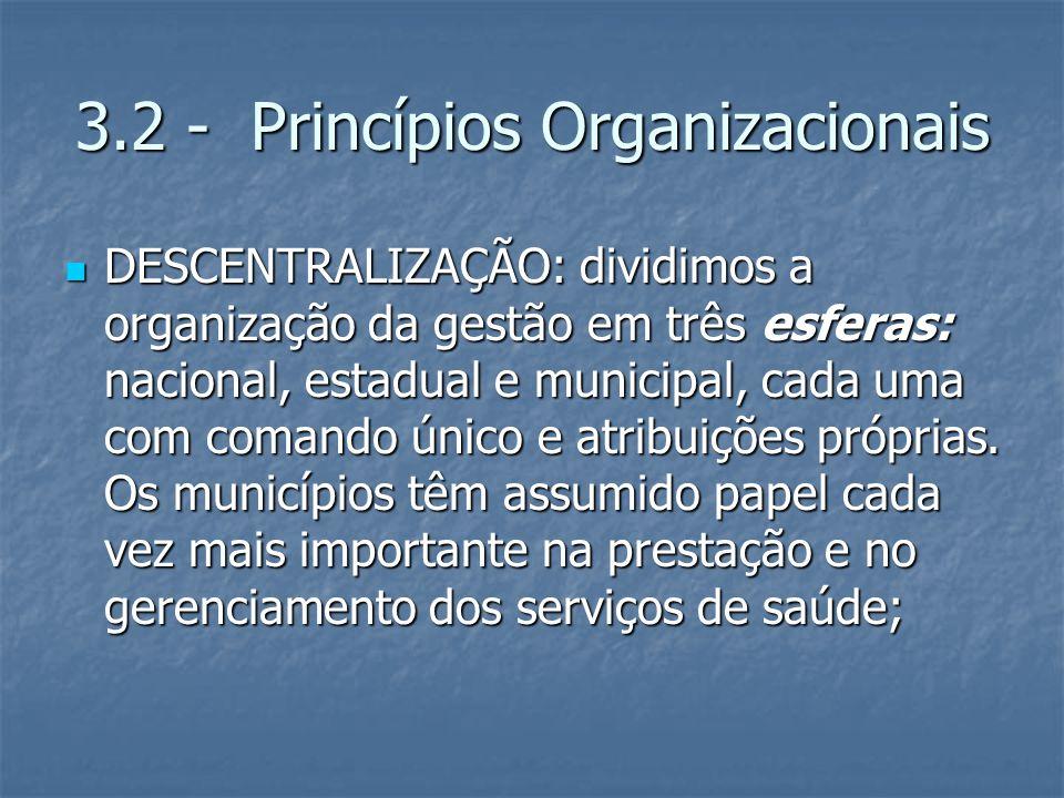 3.2 - Princípios Organizacionais