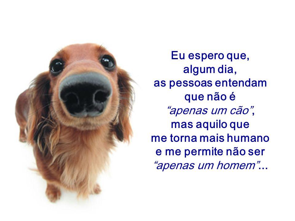 Eu espero que, algum dia, as pessoas entendam. que não é. apenas um cão , mas aquilo que. me torna mais humano.