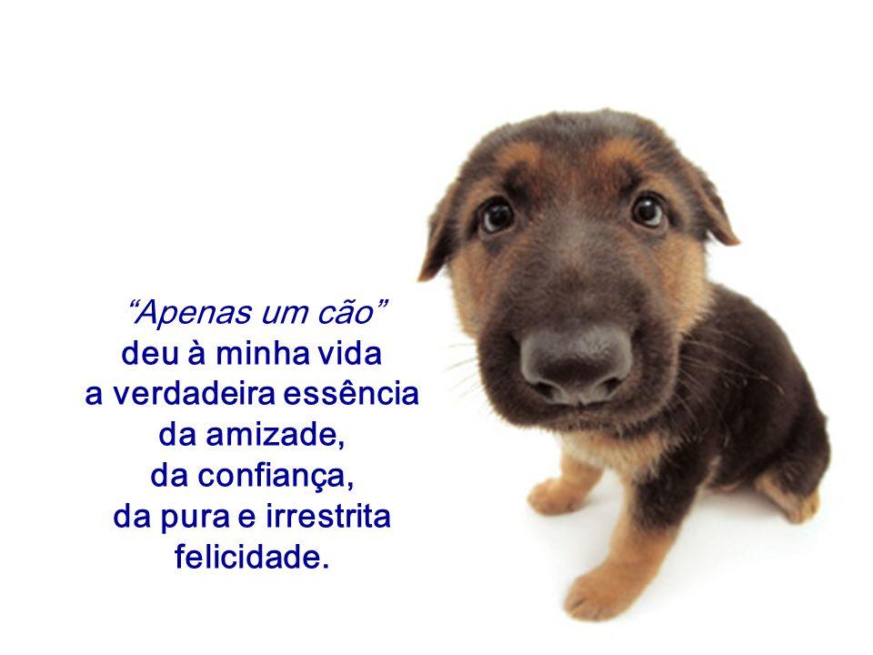 Apenas um cão deu à minha vida. a verdadeira essência. da amizade, da confiança, da pura e irrestrita.