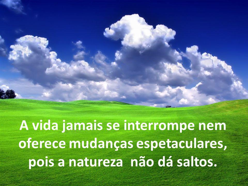 A vida jamais se interrompe nem oferece mudanças espetaculares, pois a natureza não dá saltos.
