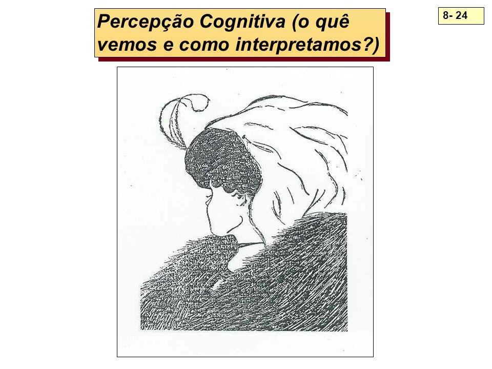Percepção Cognitiva (o quê vemos e como interpretamos )