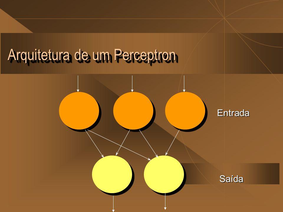 Arquitetura de um Perceptron